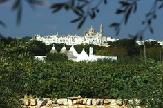 """a wonderful village on the hilltop. in the lush Itria Valley, well known for its """"trulli"""" Country Living, Lush, Italy, Culture, Vacation, Country Life, Italia, Vacations"""