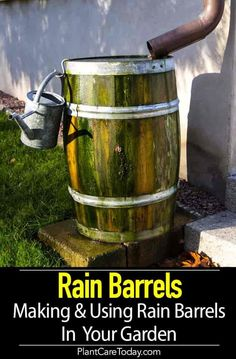 Rain barrel a simple container, often 50 -80 gallons in size, can be used to harvest and store captured rainwater draining from a roof. It's Eco Friendly and oddly enough not legal in some states. [LEARN MORE]