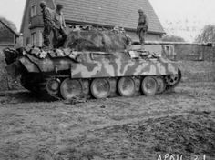 Good photo of camo variation in Panther