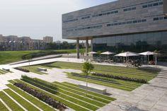 Una forma elegante y sencilla de resolver un espacio urbano