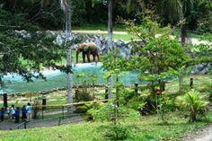 Zoológico de Mayagüez - Puerto Rico
