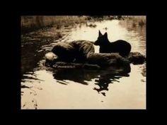 Lisa Gerrard - Of Love Undone (With Tarkovsky's Stalker)