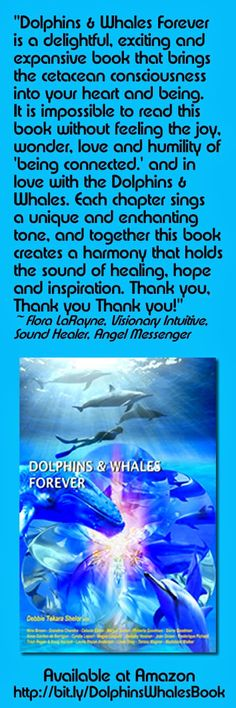 Dolphin Ohana: Bestselling Book Dolphins & Whales Forever Brings the Cetacean Consciousness Into Your Heart