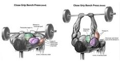 Weight benches are a central part of any weight training program. Not only are many weight training benches of the sturdiest and highest quality available, but Best Tricep Exercises, Biceps Workout, Back Exercises, Gym Workouts, Boxing Workout, Core Exercises, Workout Tips, Post Workout, Bodybuilding Training