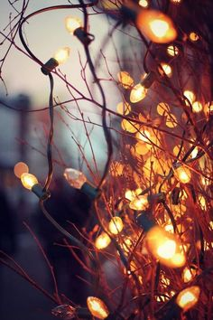 Autumn Lights In 2019 Fall Wallpaper Autumn Cozy Autumn Christmas Aesthetic Xmas Wallpapers For Iphone Home. October Wallpaper, Fall Wallpaper, Christmas Wallpaper, Wallpaper Backgrounds, Trendy Wallpaper, City Wallpaper, Vintage Wallpaper, Wallpaper Desktop, Phone Wallpapers