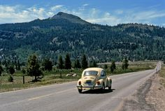 Shorpy Historical Photo Archive :: Beetle in the Boonies: 1972 near lake Taho