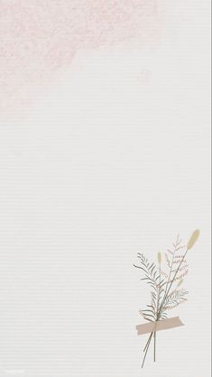 Iphone 6 Wallpaper Backgrounds, Pastel Background Wallpapers, Flower Background Wallpaper, Simple Wallpapers, Iphone Wallpaper Tumblr Aesthetic, Flower Backgrounds, Aesthetic Wallpapers, Paper Background Design, Simple Background Images