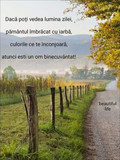 Faith Quotes, Love Life, Spirituality, Country Roads, Beautiful Things, Flowers, Women, Butterflies, Religious Quotes