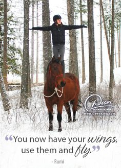 """""""You now have your wings, use them and fly."""" ~ Rumi www.dawnking.com"""
