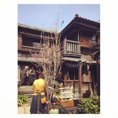 Old Japanese traditional houses turned into cafes art shops and restaurants. #japantravel #tokyo #architecture #tokyoarchitecture #cafe #tokyocafe