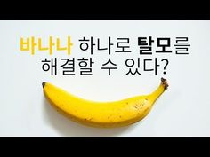 바나나 하나로 10분만에 탈모를 해결할 수 있다?_채널A_돈나와라뚝딱 2회 - YouTube Fitness Diet, Health Fitness, Social Tv, Holidays And Events, Hair Loss, Good To Know, Helpful Hints, Life Hacks, Hair Care