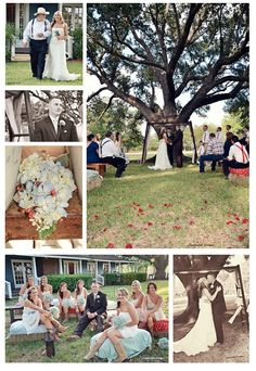 get married under a large tree like this photo