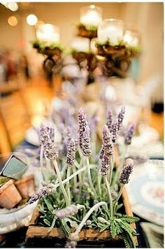 lavender centerpiece and table setting