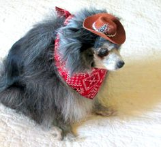 Small Dogs Bandanna and Cowboy Hat Set by BloomingtailsDogDuds, $13.95