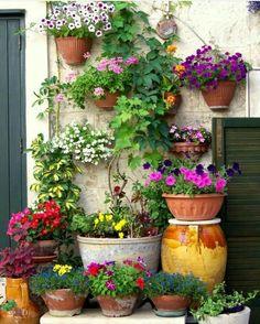 Small Backyard Gardens, Small Space Gardening, Small Gardens, Backyard Landscaping, Outdoor Gardens, Side Garden, Lawn And Garden, Garden Pots, Container Plants