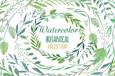 Watercolor Botanical Clipart by Annakristal on @creativemarket