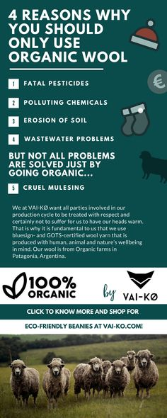4 reasons to use Organic Wool. Read why and how here! Living Quotes, Environmental Issues, Sustainable Clothing, Greatest Adventure, Simple Living, Van Life, Farmer, Sustainability, Eco Friendly