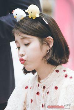 170507 IU Palette Fansign @ Time Square by Spinel Iu Short Hair, Iu Hair, Short Hair Styles, Cute Korean, Korean Girl, Asian Girl, Girl Artist, Moon Lovers, Iu Fashion
