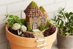 Skip the craft-show fairy houses and save money by making your very own from materials you have on hand. For more crafty fun, visit P&G everyday today!