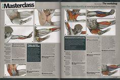 Anatomy masterclass page one
