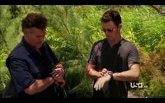 agent pearce burn notice - Search Yahoo Image Search Results
