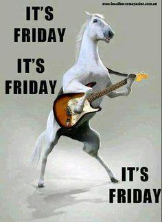Happy Friday! | Horse Sayings | Pinterest | Cutest Animals ...