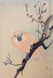 Ohara Koson (1877-1945)  Parrot on Flowering Plum