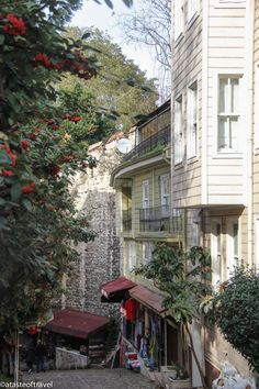 Nestled between the Aya Sofia and the Topkapi Palace, lies a small cobblestoned street often overlooked by visitors to Istanbul.