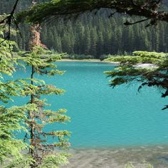 Avalanche Lake Glacer National Park. The color of the water is really this blue green from the glacial till. Amazing.