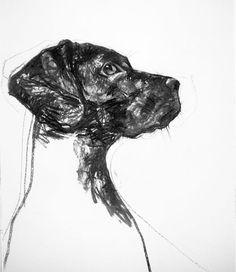 """Dog's Head Study"" by Christos Tsimaris"