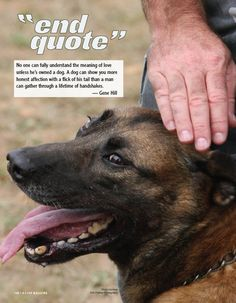 No one can fully understand the meaning of love unless he's owned a dog. A dog can show you more honest affection with a flick of his tail than a man can gather through a lifetime of handshakes. ~ Gene Hill