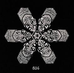 William Bentley, Snowflakes