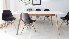 The Aver oak and white extendable table creates a beautiful contrast between oak and matt satin finishes. View the full range available at Danetti today. White Extending Dining Table, White Oak Dining Table, 8 Seater Dining Table, Colored Dining Chairs, Oak Table, Extendable Dining Table, Dining Set, Dining Rooms, White Eames Chair