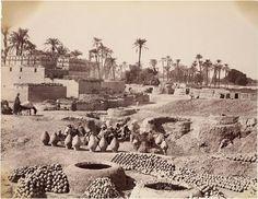 Jardines de arena: un viaje fotográfico en el tiempo