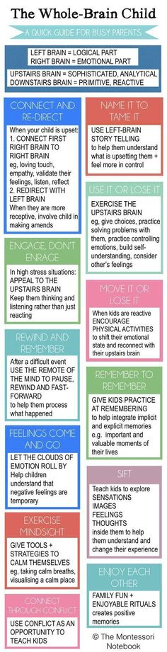 Summary of The Whole-Brain Child - an essential infographic to help you put into practice the 12 strategies from Dan Siegel's best seller The Whole-Brain Child #EducationalInfographics