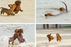 You can run and play on the beaches and have a wonderful time!! <3