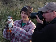 """""""A photo session for a carefully held puffin."""" (Quoted from http://isleofmaynnr.blogspot.co.uk)"""