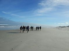 Book your hiking or slackpacking trail today with Shoreline of the San on the West Coast of South Africa - Dirty Boots Before Sunset, Hiking Trails, The Great Outdoors, West Coast, Wilderness, South Africa, Wildlife, San, Adventure