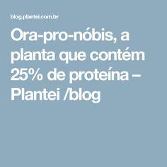 Ora-pro-nóbis, a planta que contém 25% de proteína – Plantei /blog