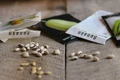How to test seeds for viability to make sure you aren't planting a bunch of duds in your garden!