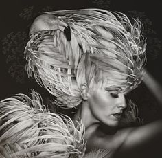 Fashion And Feathers