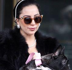 A ousada cantora Lady Gaga usa seu óculos de sol Fendi Iridia enquanto passeia com seu pet. Um arraso essa beldade! #oculos #de #sol #lancamento #luxo #dog #colorido #oticas #wanny #moda #sunglasses