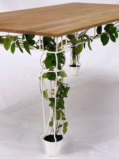 plantable garden table at london designersblock 2011 An indoor garden under the table! An indoor garden under the table! Plant Table, Garden Table, Garden Art, Deck Table, Tree Table, Picnic Table, Dining Table, Porch Table, Plant Pots