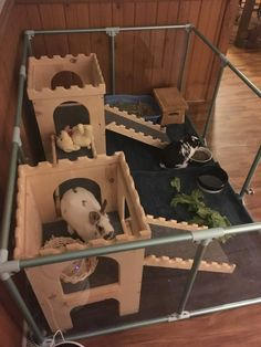 clearly_loved_pets These bunnies are enjoying their Castle in a large Lucidium Dog pen. leonardo_vader let's build it Diy Bunny Cage, Diy Guinea Pig Cage, Bunny Cages, Rabbit Cages, Rabbit Pen, Pet Rabbit, Coelho Fuzzy Lop, Bunny Castle Diy, Bunny Play Pen