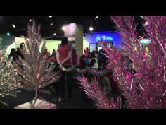 Breaking Video News - Aluminum Christmas Trees Back in Spotlight - http://notjustthenews.com/2013/12/20/breaking/breaking-video-news-aluminum-christmas-trees-back-in-spotlight/