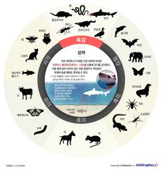 infographics 인간에게 없는 동물의 '놀라운' 감각