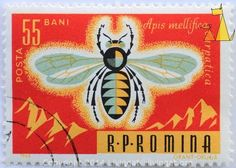 Honeybee on Red, RP Romina, Romania, stamp, insect, bee, posta, 55 bani, 1963, Grant Druga, Apis mellifica carpatica, Apis mellifera