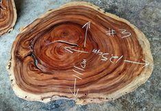 Live Edge Table, Live Edge Wood, Slab Table, Wood Tables, Wood Tree, Wood Slab, Round Coffee Table, Natural Shapes, Acacia Wood