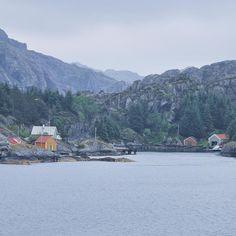 Missing #Norway so much! #FjordExperience lungo la tratta che @hurtigruten percorre tra #Ålesund e #Bergen sono molti gli scorci che sembrano usciti da un dipinto fermi nella quiete immobile del nord ancor più solitari nelle giornate piovose ma carichi di grande fascino! A volte immagino quanto sarebbe bello avere una casetta li è rifugiarmi a meditare di tanto in tanto...  #Norvegia @volagratis  @visitnorway_it