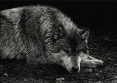 Hudozhnitsa-Cristina-Penescu.-Grattazh-Wolf.-5x7-dyuymov